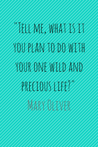 %22tell-me-what-is-it-you-plan-to-do-with-your-one-wild-and-precious-life%22-mary-oliver